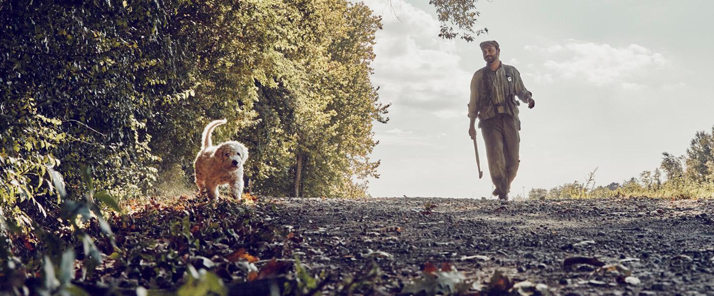 truffle hunting istra