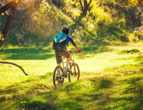 Biking in the forest. Girl rides a bike on a forest trail. Woman riding her bike in the park. Bicycle touring. Travel to scenic places. Autumn trees.